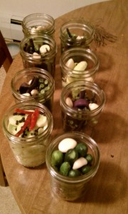 Filling the jars with cucumbers, green beans, garlic, pepper corns and hot peppers.